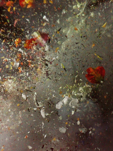 Ori Gersht, Untitled, 2006 (Time After Time series)  LVT print, cm 40 x 30 - Courtesy dell'artista e Brand New Gallery, Milano