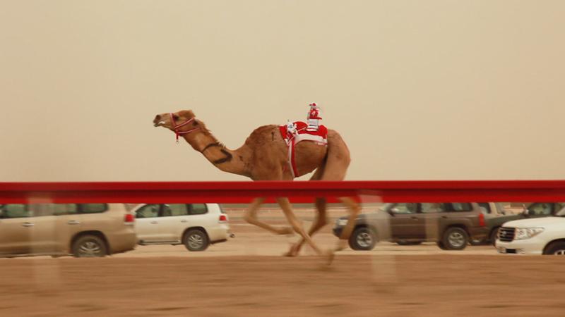 Galleria Michela Rizzo, Francesco Jodice, Still dal video Dubai_Citytellers, 2010, cura di Angela Madesani