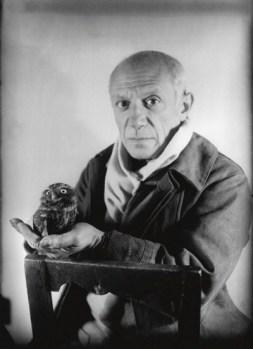 Pablo Picasso e la civetta, foto Michel Sima 1946
