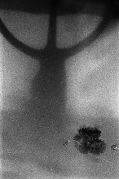 Emanuele Greco - DEMIURGO, Fotografie di BLERTA HOCIA, Sala Rosa SIENA