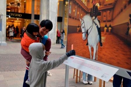 Milano arte, Mark Jenkins, Vienna Tourist Board, Carrot Horse
