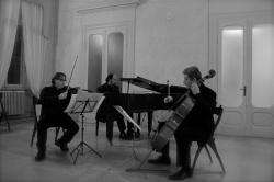 Stefano Gueresi, Trio GCR