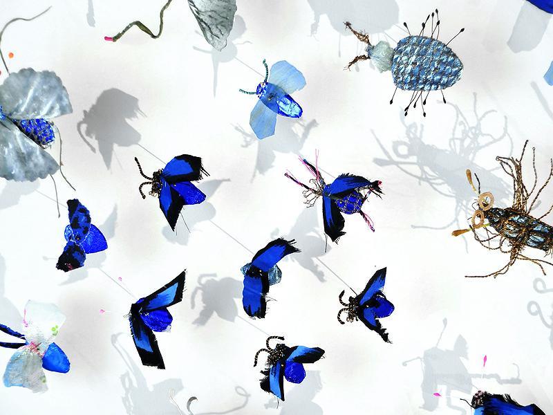 Galleria CASA DUGNANI, insetti_didier_1