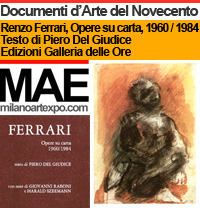Renzo Ferrari, ARTISTA