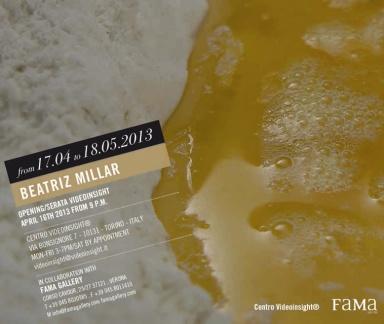 Videoinsight, FaMa Gallery, BEATRIZ MILLAR