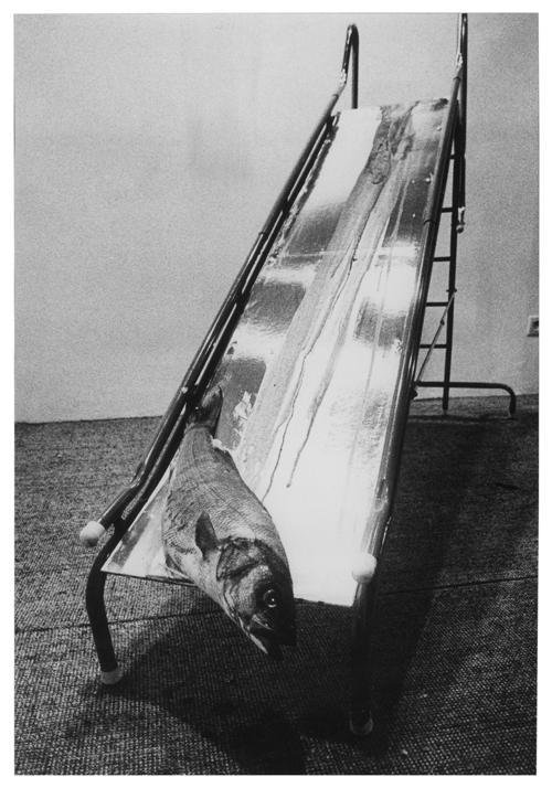 ALDO MONDINO. NOMADE A MILANO, Fondazione Mudima - Aldo Mondino, Scivolo, 1968, pesce, sangue, scivolo in metallo, piano argentato