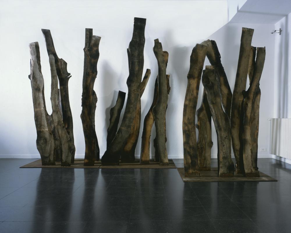 Maria Cristina Carlini, Legni, 2012, legno, base - ferro, n. 5 moduli di cm 300x150x100 cad