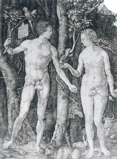 Museo della Permanente DÜRER L'OPERA INCISA DALLA COLLEZIONE DI NOVARA - Albrecht Durer, Adamo ed Eva, 1504, bulino, mm 249 x 191