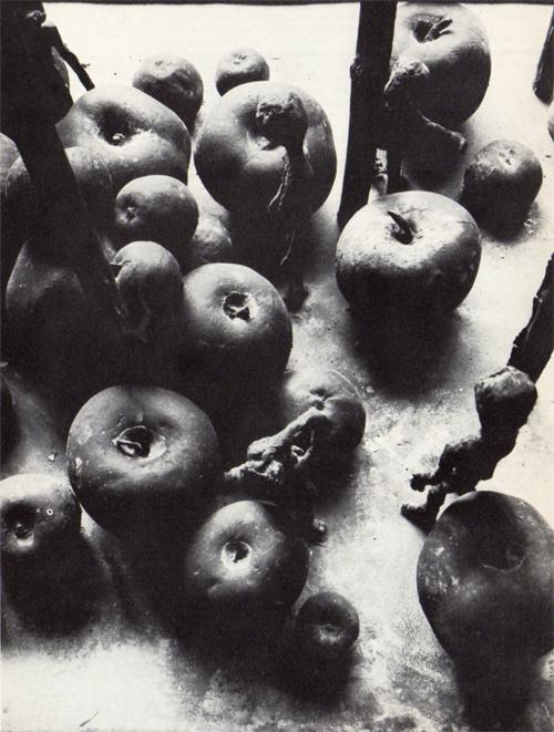 Alik Cavaliere, Immagini delle cose, particolare, 1963