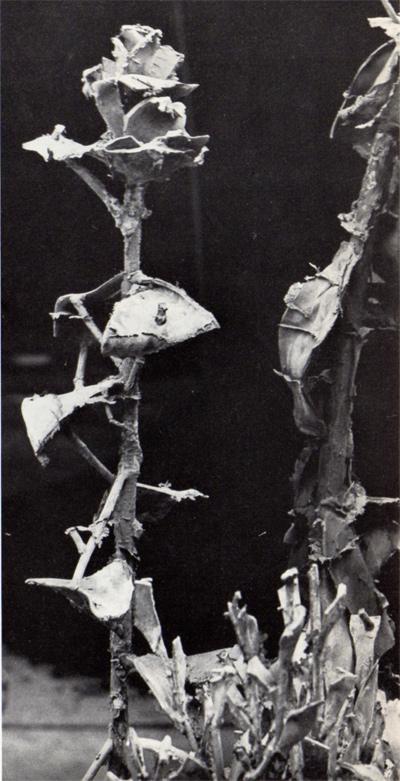 Alik Cavaliere, Ogni cosa è limite e libertà di un'altra, bronzo, particolare, cm 121x126x82, 1964