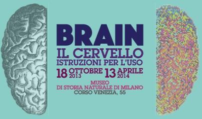 BRAIN Il cervello istruzioni per l'uso