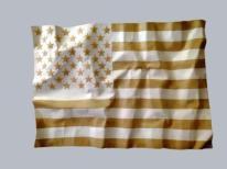Maurizio Savini Social Distortion - american flag 2014 165x126