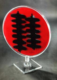 Fausta Dossi-Presenza cm.59x47 cartoncino chiuso nel plexiglas (5)