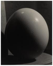 Sotheby's Parigi asta MAN RAY - Ostrich Egg, 1944, Vintage silver print - Estimate 25,000 – 35,000€